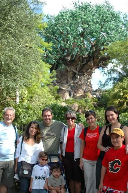 A grande árvore símbolo do parque.
